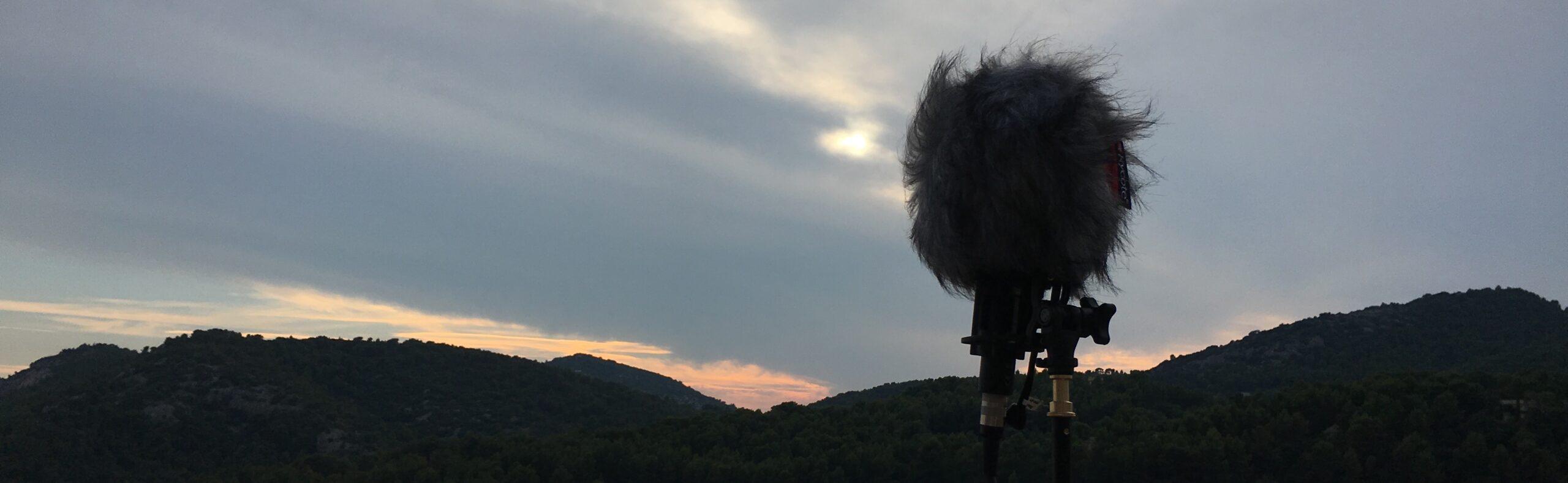 firled recording ambisonic